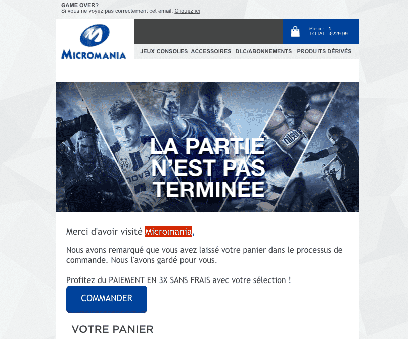 exemple email relance panier abandonne