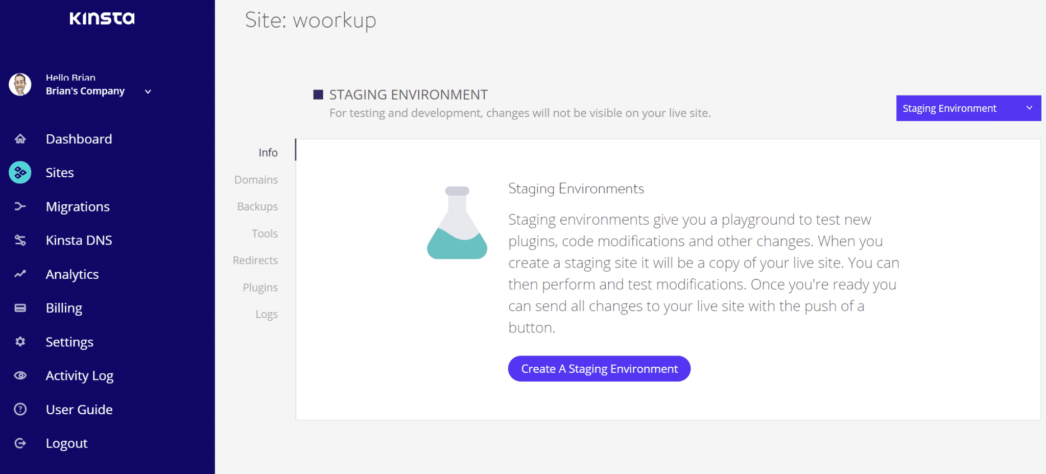 kinsta staging